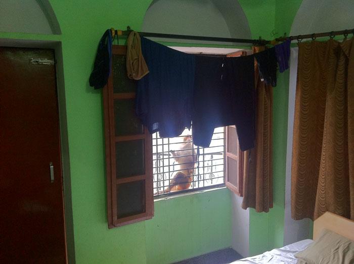 Los monos vienen a vernos a nuestra habitación de Varanasi.