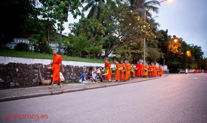 monjes-luang-prabang-tak-bat-9