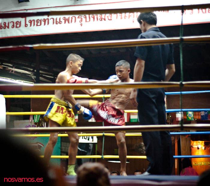Primer combate con los luchadores más jóvenes