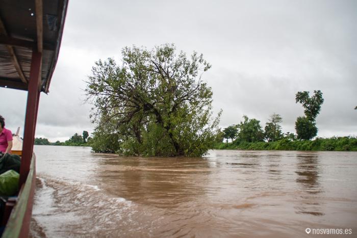 Desde nuestra barca navegando por el Mekong, aguas bravas y árboles en medio del río