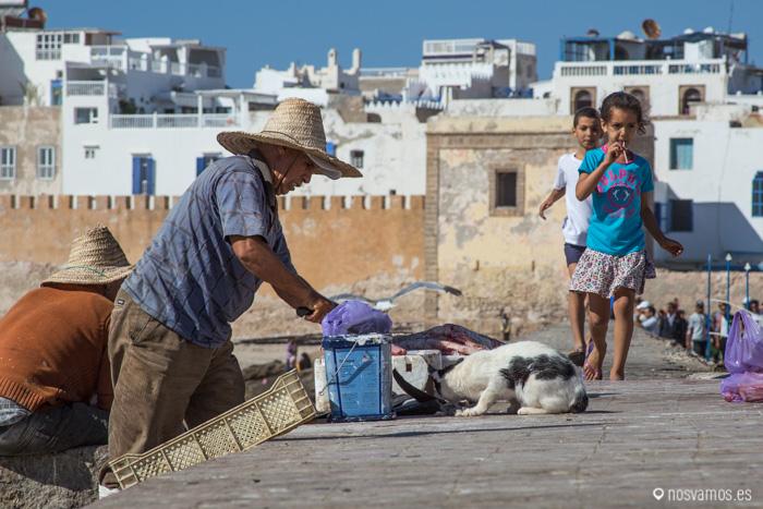Limpiando pescado en el puerto