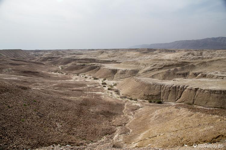 A pocos kilómetros al sur de Ramalah el entorno cambia totalmente