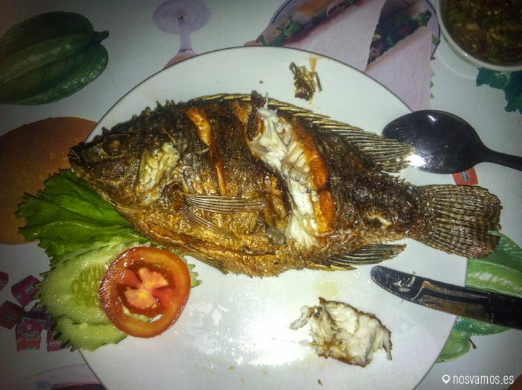 Un pescadito del Mekong