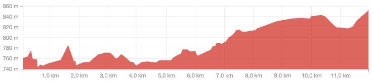 Perfil y altimetría del maratón de Palestina. Corresponde a un tramo de 10,5km que se hace ida y vuelta 2 veces